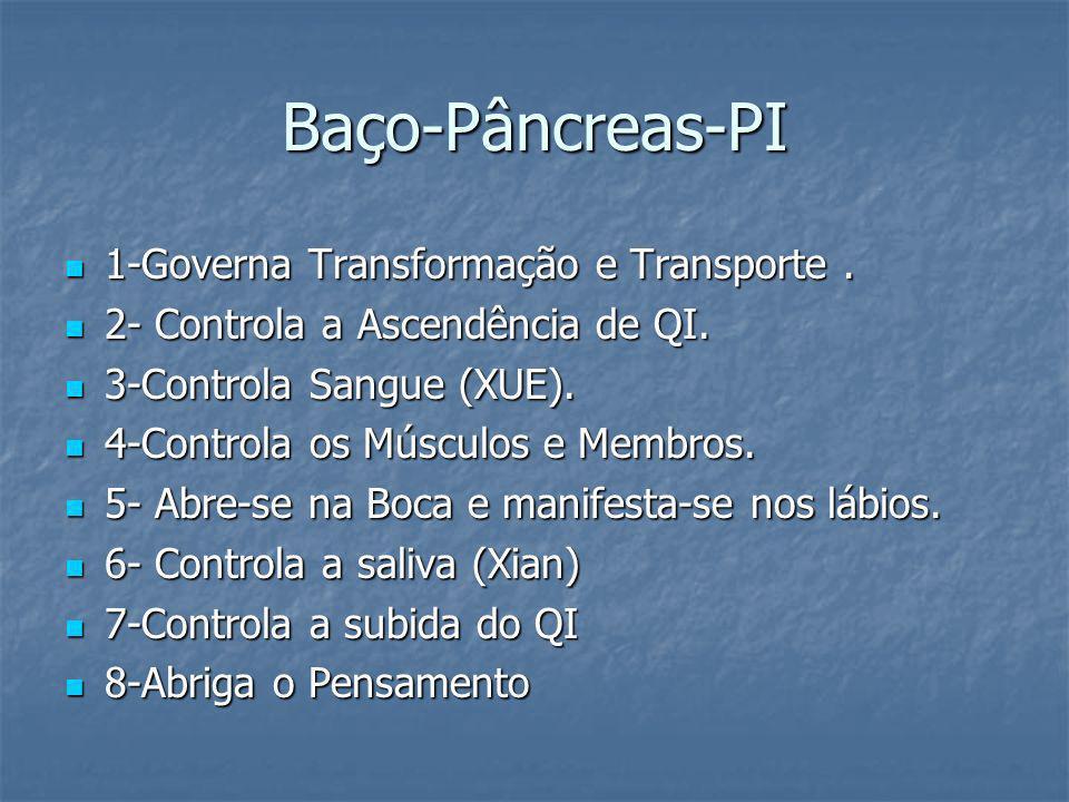 Baço-Pâncreas-PI 1-Governa Transformação e Transporte .