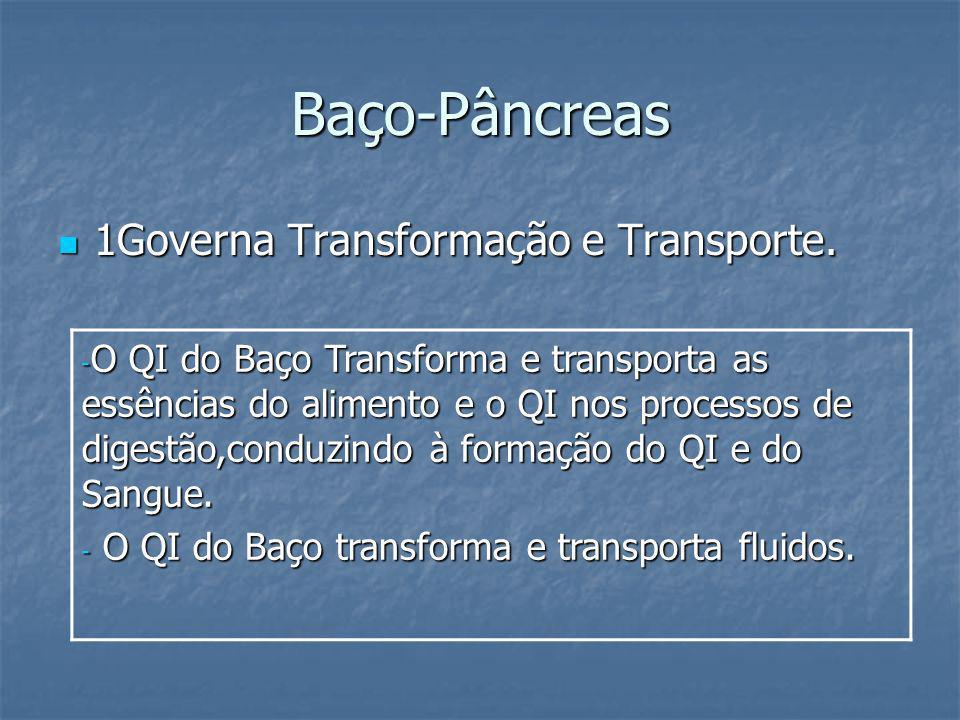 Baço-Pâncreas 1Governa Transformação e Transporte.