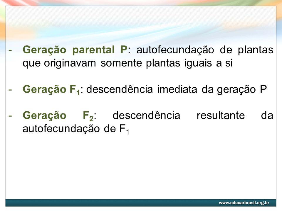Geração parental P: autofecundação de plantas que originavam somente plantas iguais a si