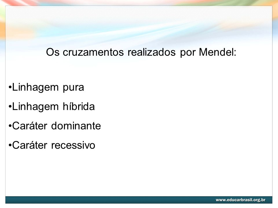 Os cruzamentos realizados por Mendel: