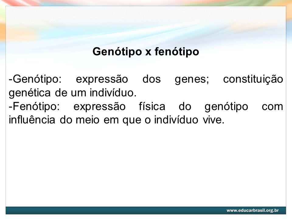 Genótipo x fenótipo Genótipo: expressão dos genes; constituição genética de um indivíduo.