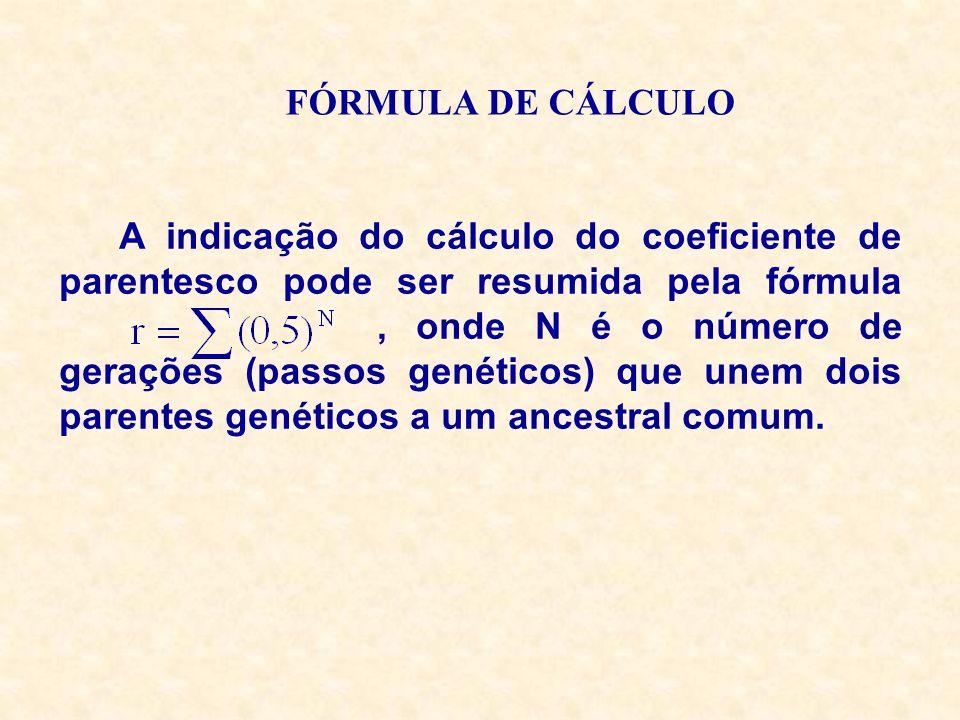 FÓRMULA DE CÁLCULO