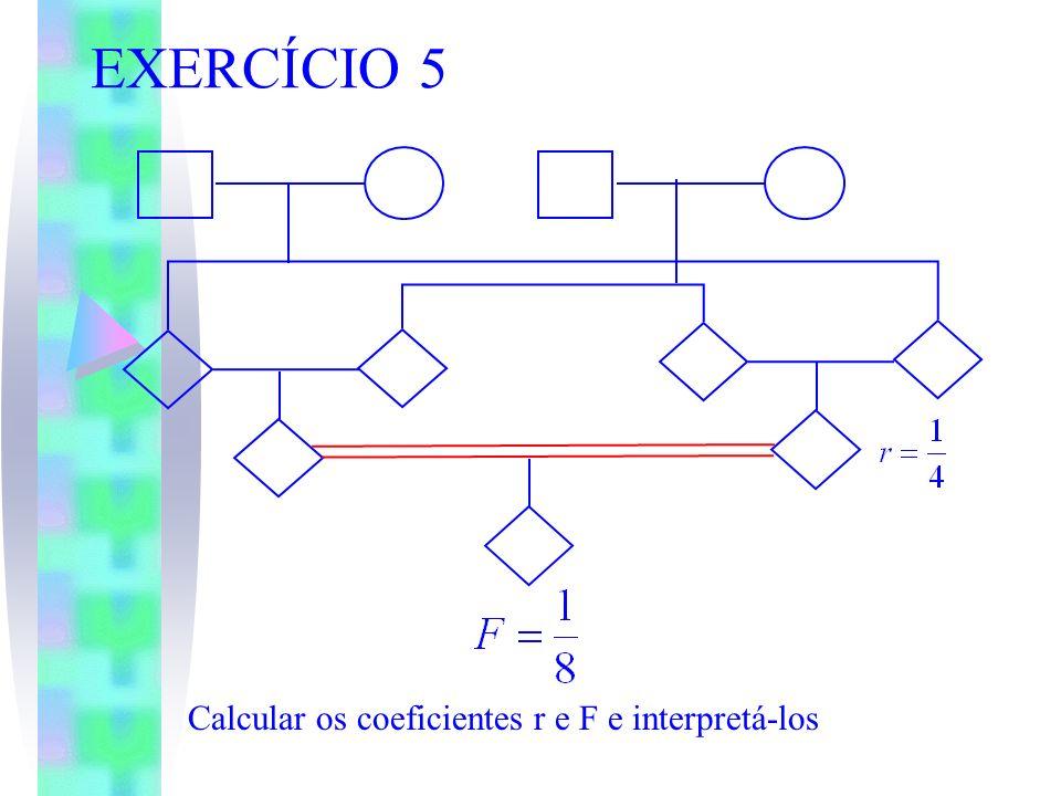 EXERCÍCIO 5 Calcular os coeficientes r e F e interpretá-los