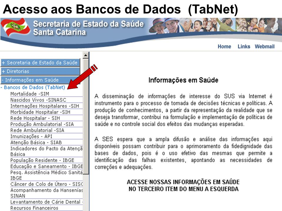 Acesso aos Bancos de Dados (TabNet)