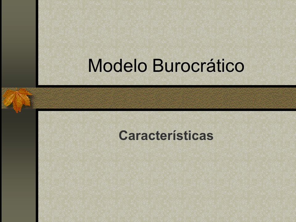 Modelo Burocrático Características