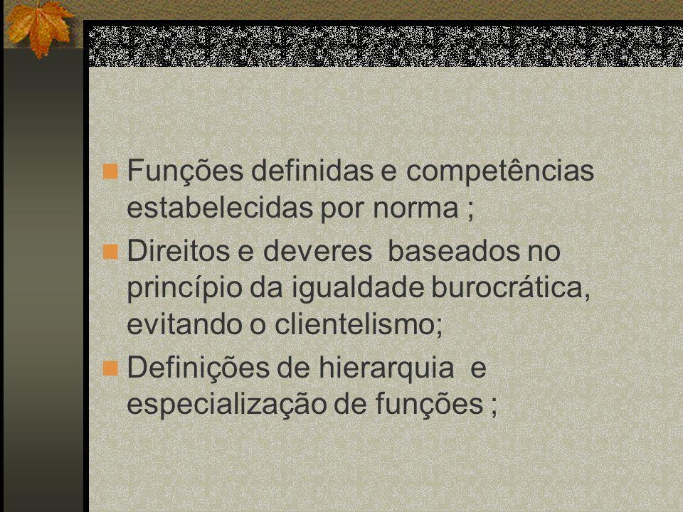 Funções definidas e competências estabelecidas por norma ;