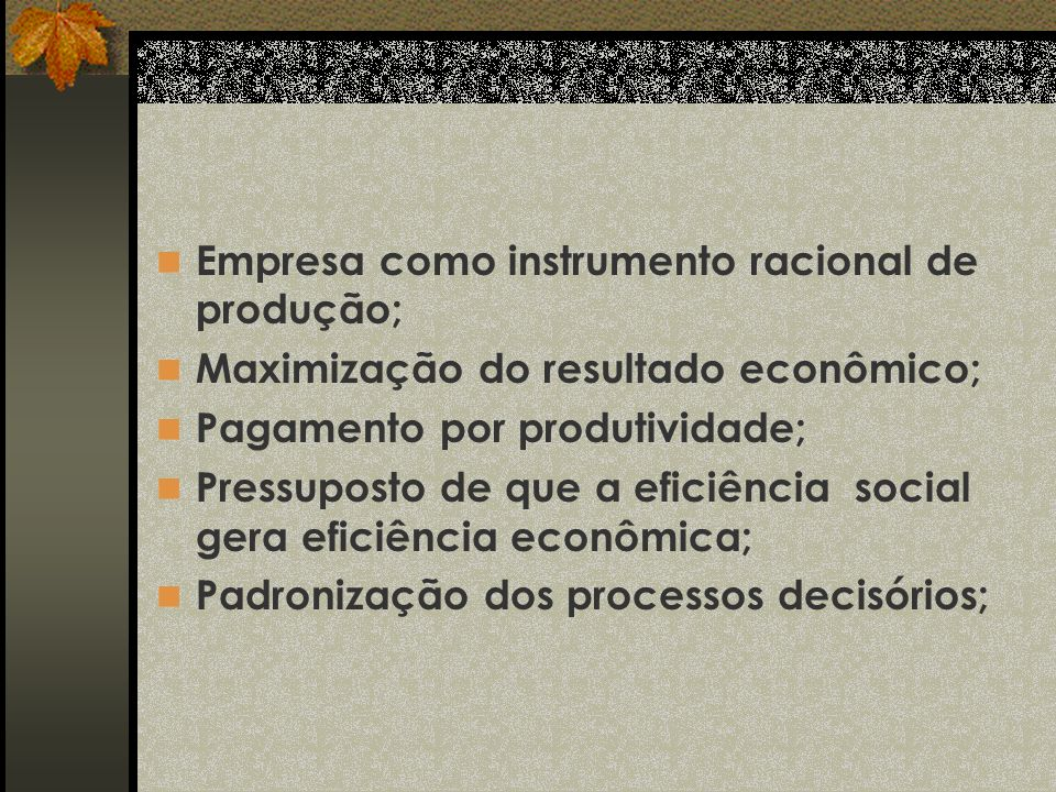 Empresa como instrumento racional de produção;