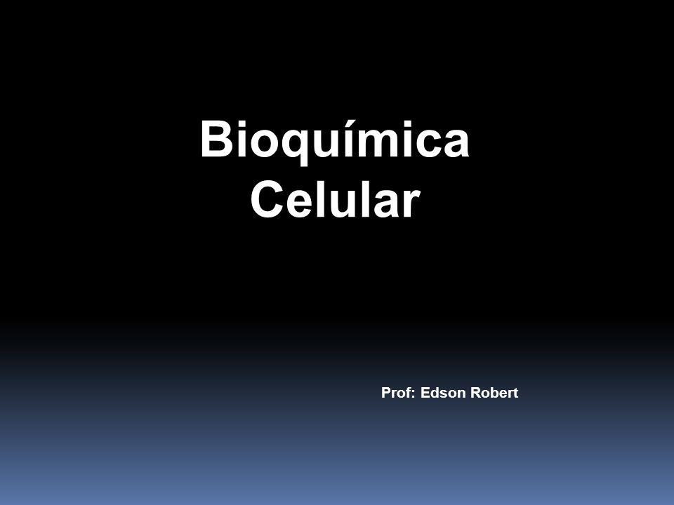 Bioquímica Celular Prof: Edson Robert