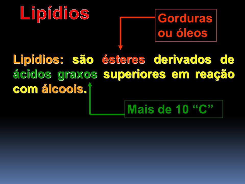 Lipídios Gorduras ou óleos