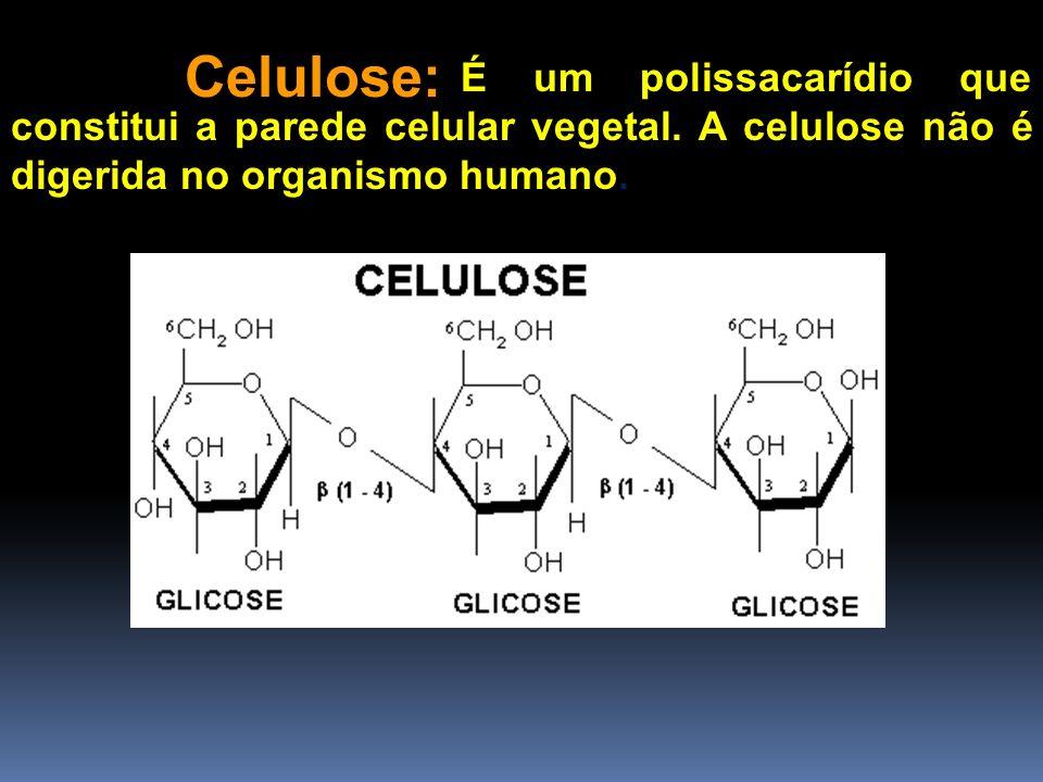 Celulose:É um polissacarídio que constitui a parede celular vegetal.