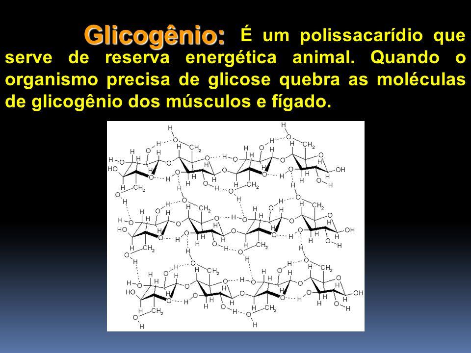 Glicogênio: