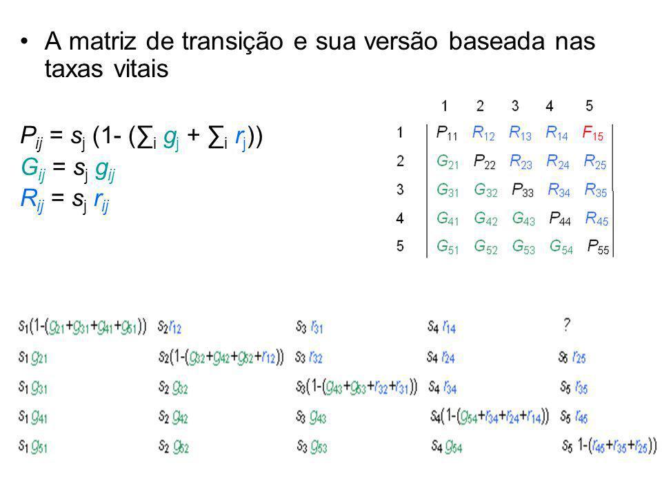 A matriz de transição e sua versão baseada nas taxas vitais
