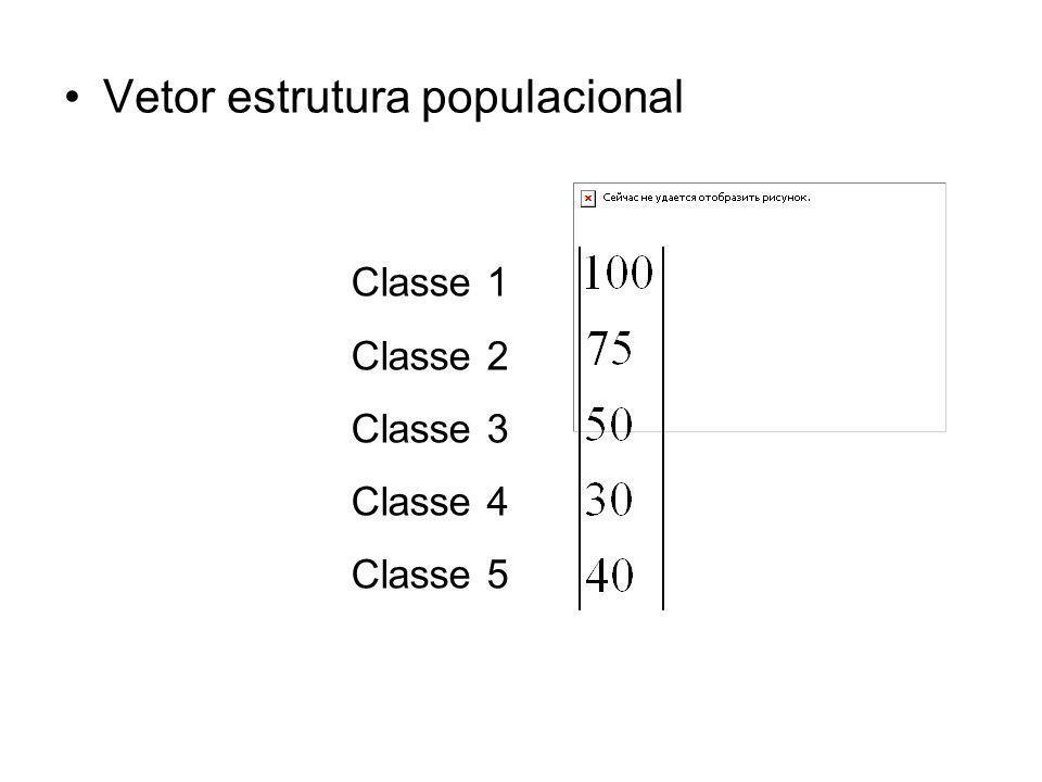 Vetor estrutura populacional