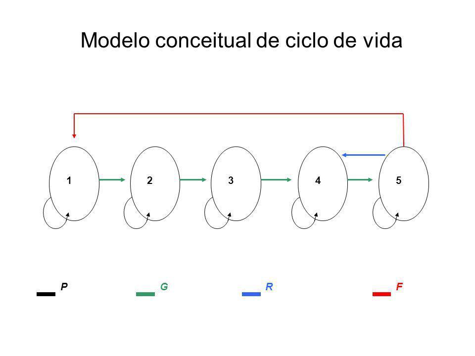 Modelo conceitual de ciclo de vida