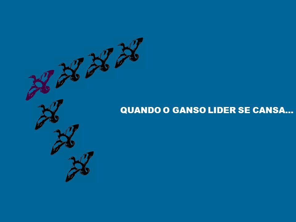 QUANDO O GANSO LIDER SE CANSA...