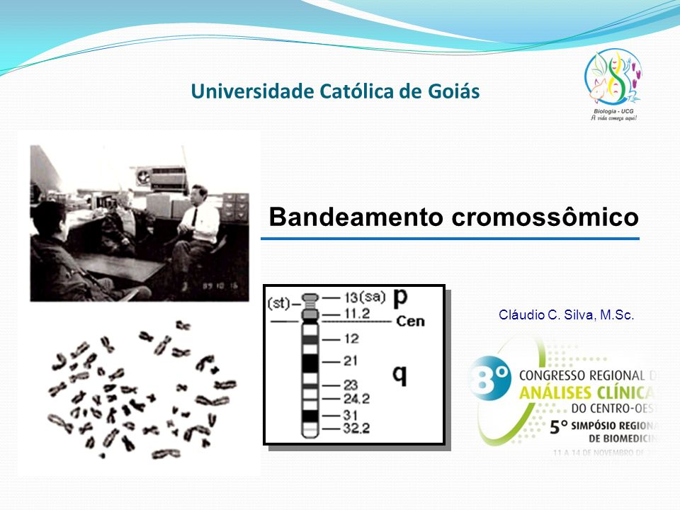 Universidade Católica de Goiás