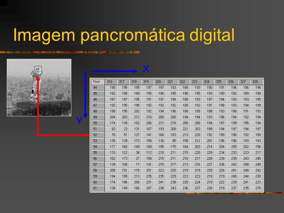Imagem pancromática digital