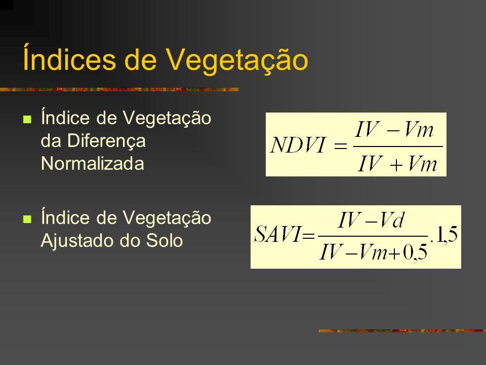 Índices de Vegetação Índice de Vegetação da Diferença Normalizada