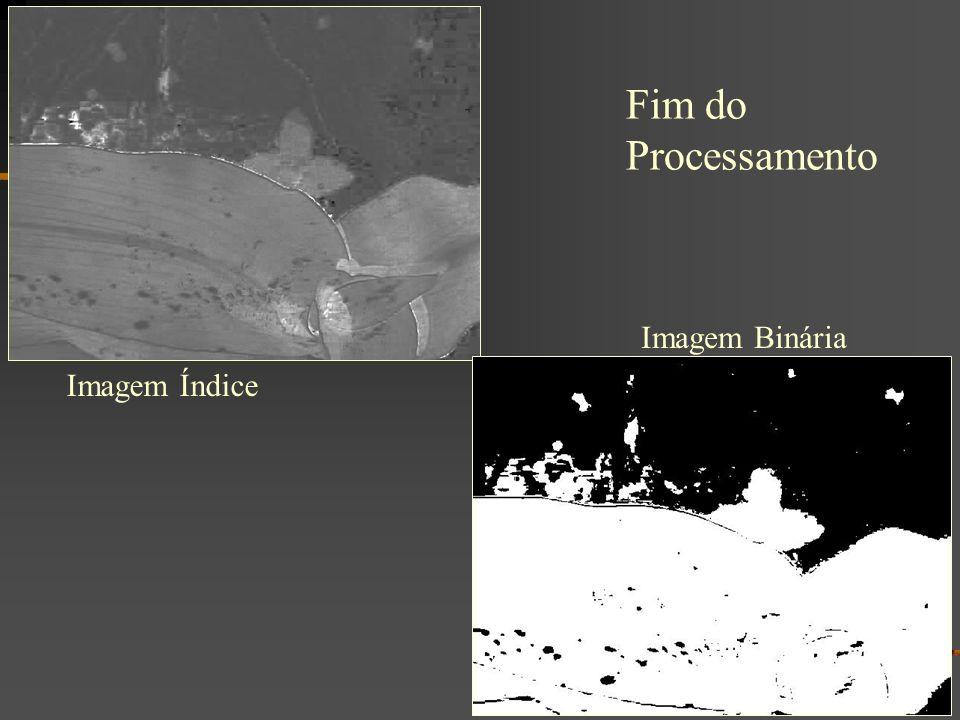 Fim do Processamento Imagem Binária Imagem Índice