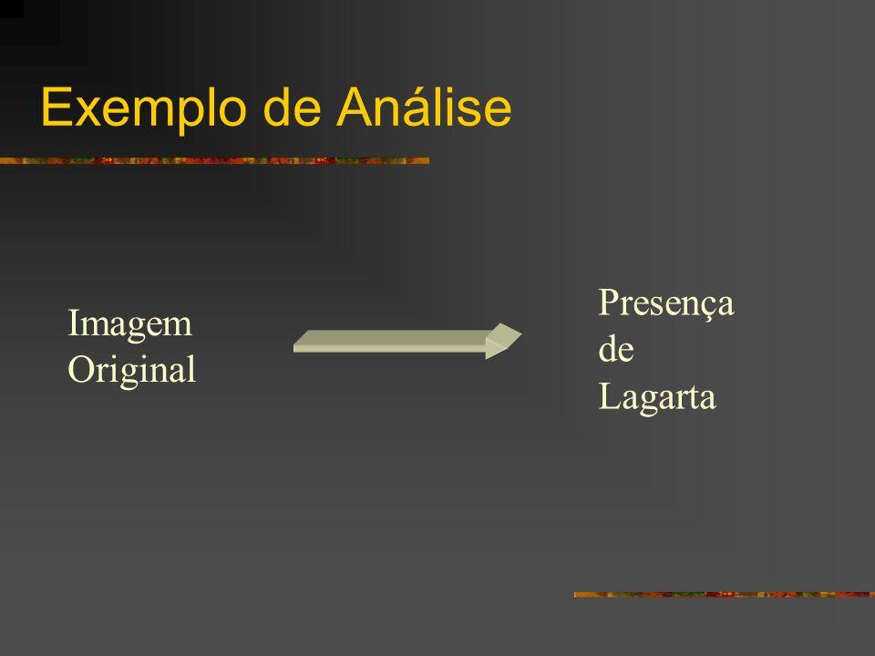 Exemplo de Análise Presença de Lagarta Imagem Original