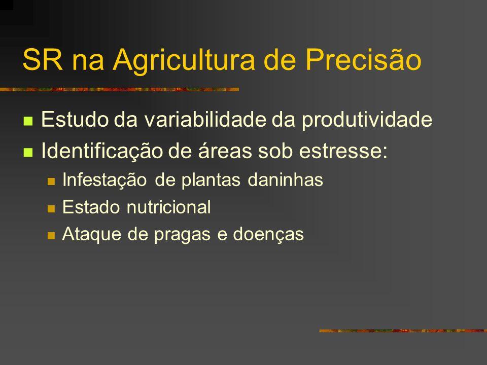 SR na Agricultura de Precisão