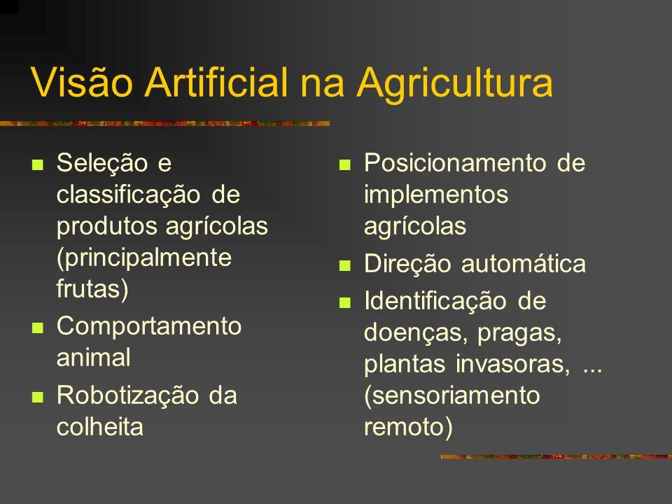 Visão Artificial na Agricultura