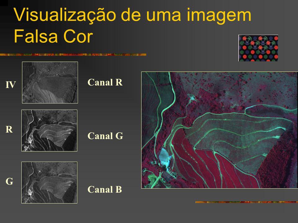Visualização de uma imagem Falsa Cor