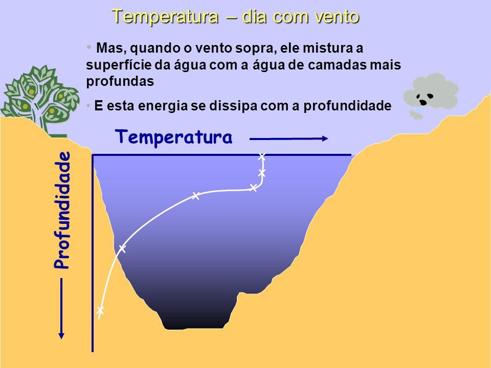 Temperatura – dia com vento