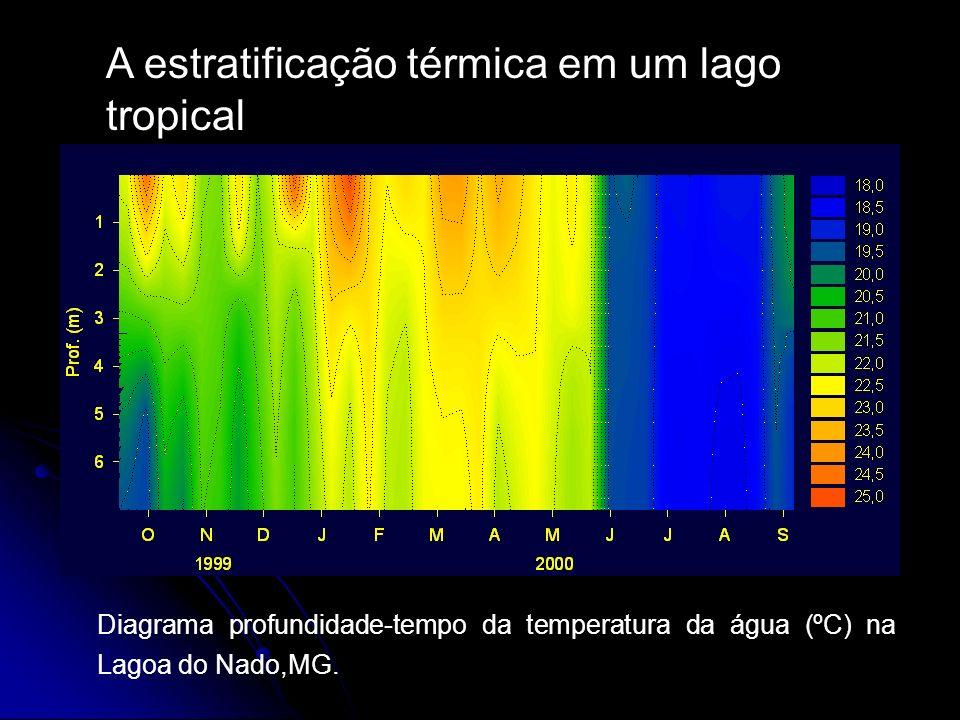 A estratificação térmica em um lago tropical