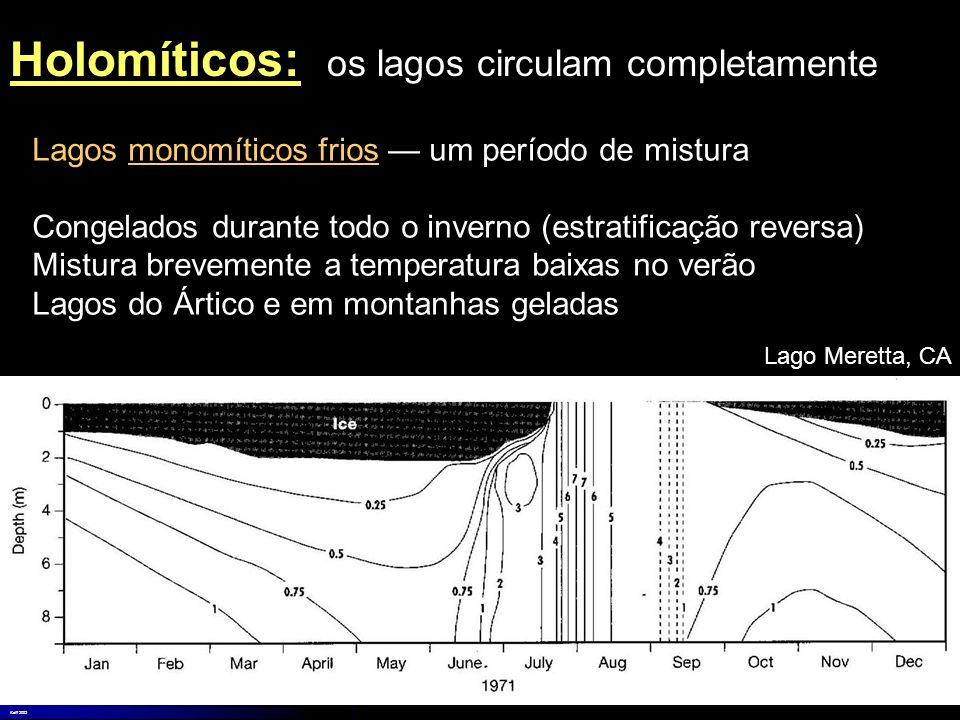 Holomíticos: os lagos circulam completamente
