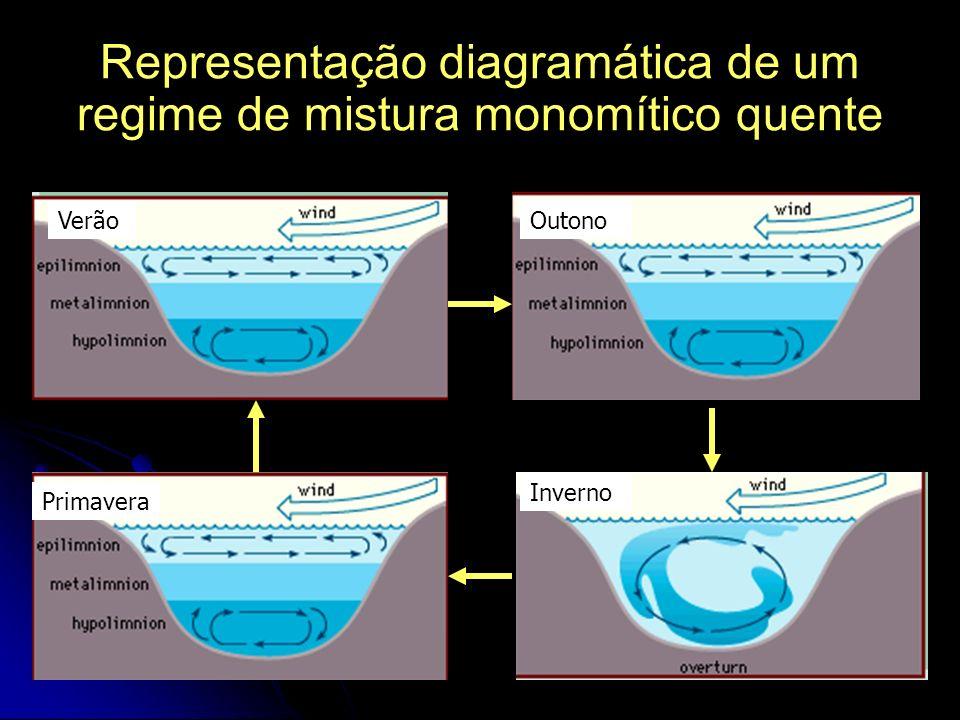 Representação diagramática de um regime de mistura monomítico quente