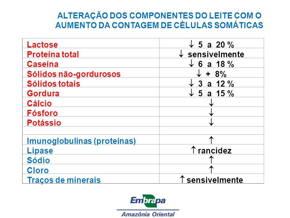 Sólidos não-gordurosos  + 8% Sólidos totais  3 a 12 % Gordura