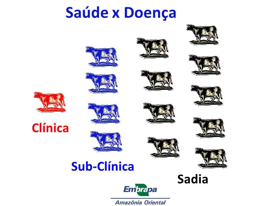 Saúde x Doença Clínica Sub-Clínica Sadia