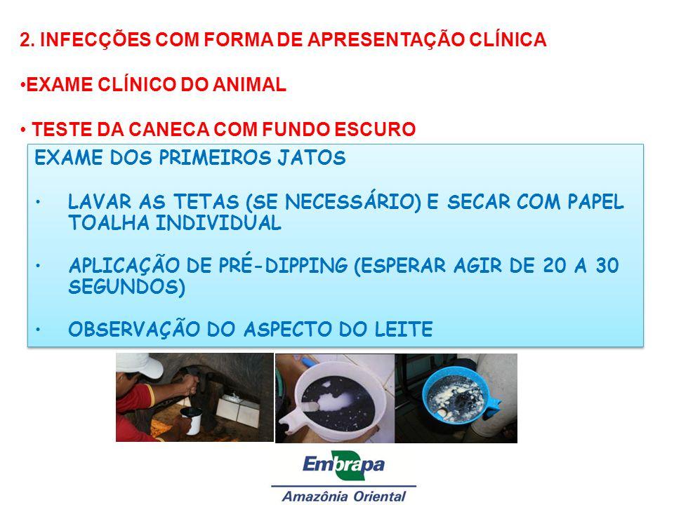 2. INFECÇÕES COM FORMA DE APRESENTAÇÃO CLÍNICA EXAME CLÍNICO DO ANIMAL