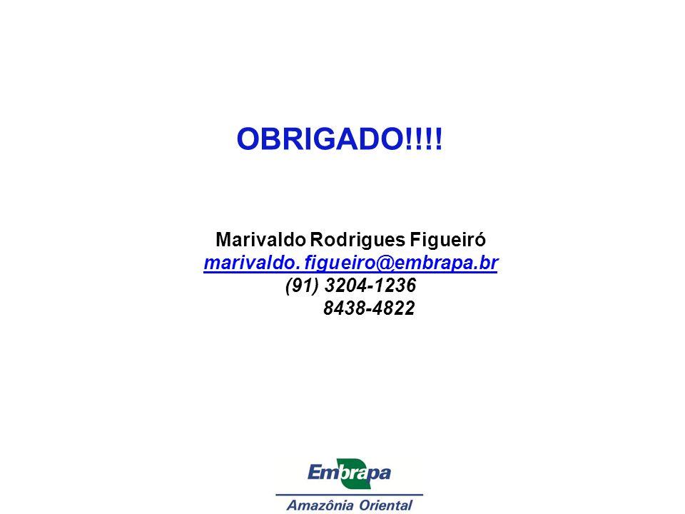Marivaldo Rodrigues Figueiró marivaldo. figueiro@embrapa.br
