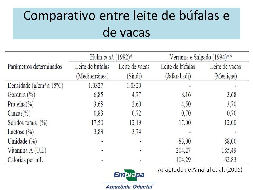 Comparativo entre leite de búfalas e de vacas