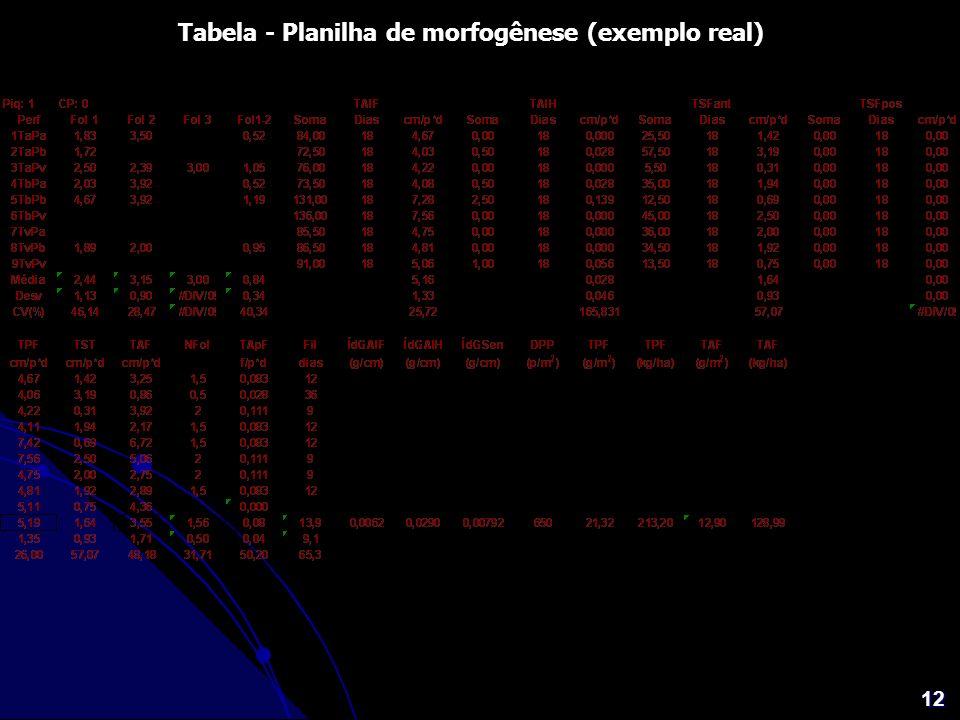 Tabela - Planilha de morfogênese (exemplo real)