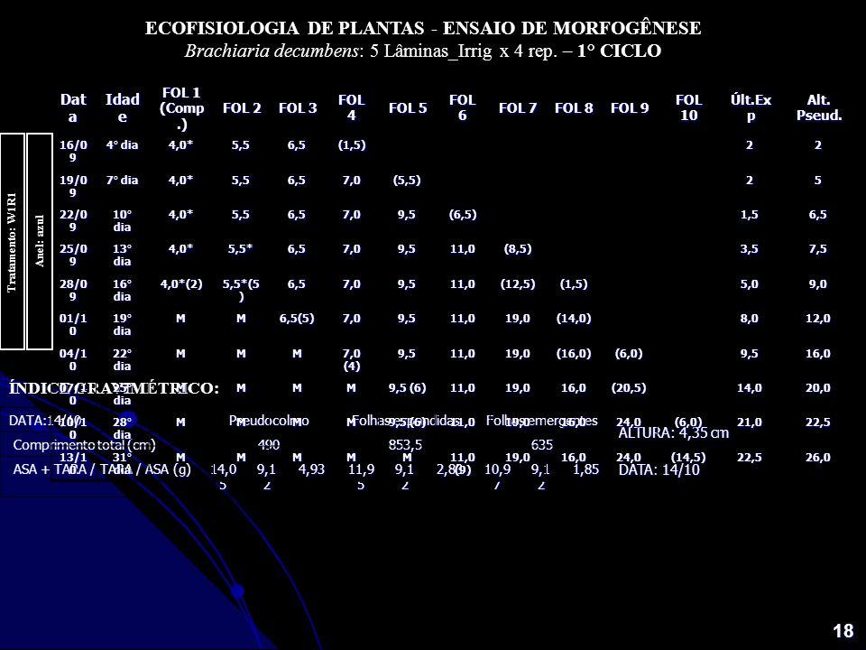 ECOFISIOLOGIA DE PLANTAS - ENSAIO DE MORFOGÊNESE