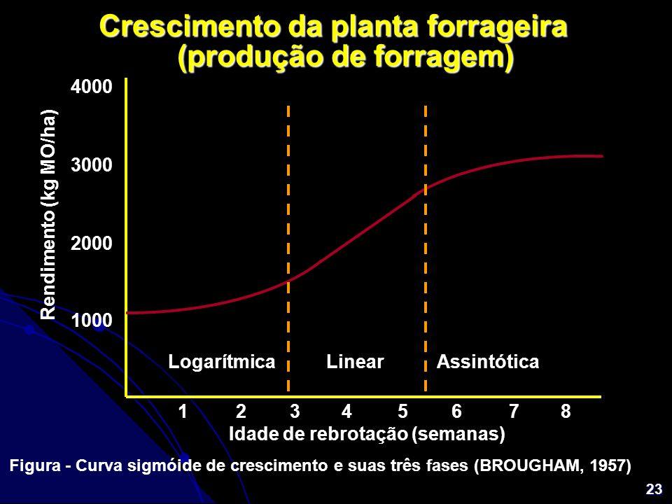 Crescimento da planta forrageira (produção de forragem)