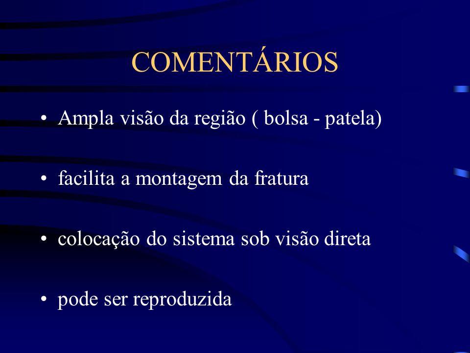 COMENTÁRIOS Ampla visão da região ( bolsa - patela)