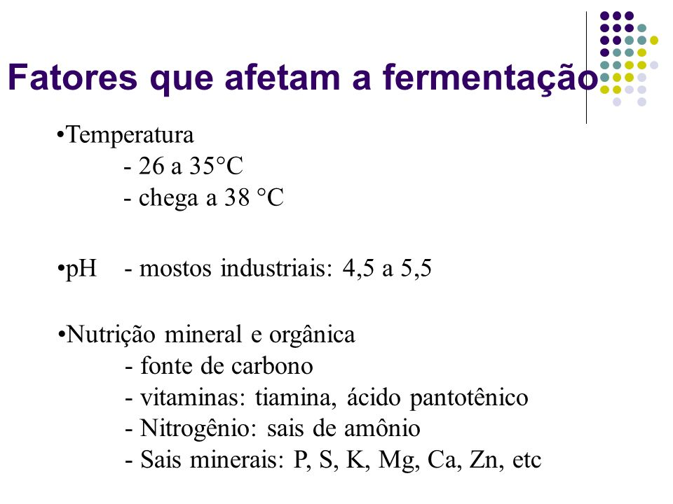 Fatores que afetam a fermentação