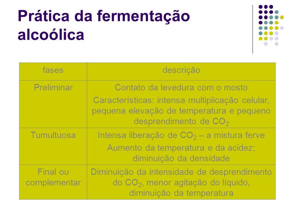 Prática da fermentação alcoólica