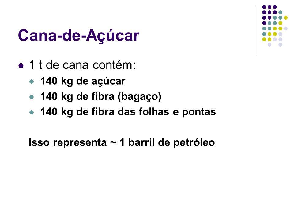 Cana-de-Açúcar 1 t de cana contém: 140 kg de açúcar