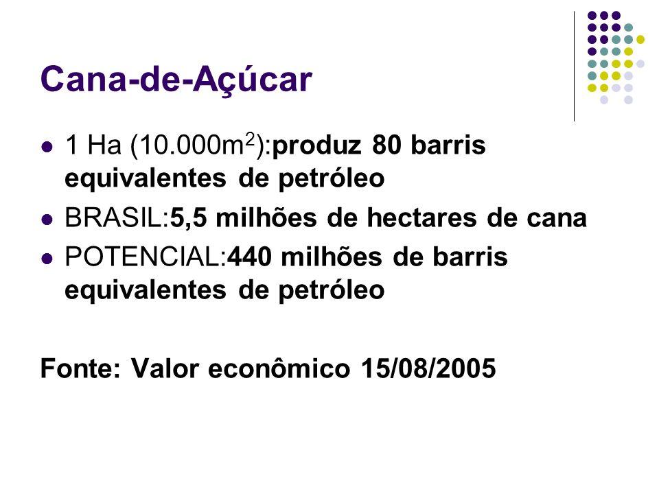 Cana-de-Açúcar 1 Ha (10.000m2):produz 80 barris equivalentes de petróleo. BRASIL:5,5 milhões de hectares de cana.