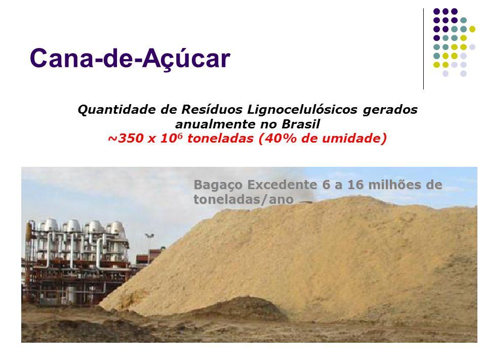 Cana-de-Açúcar Quantidade de Resíduos Lignocelulósicos gerados anualmente no Brasil. ~350 x 106 toneladas (40% de umidade)