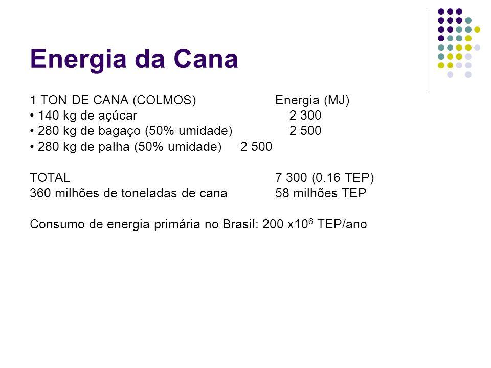 Energia da Cana 1 TON DE CANA (COLMOS) Energia (MJ)