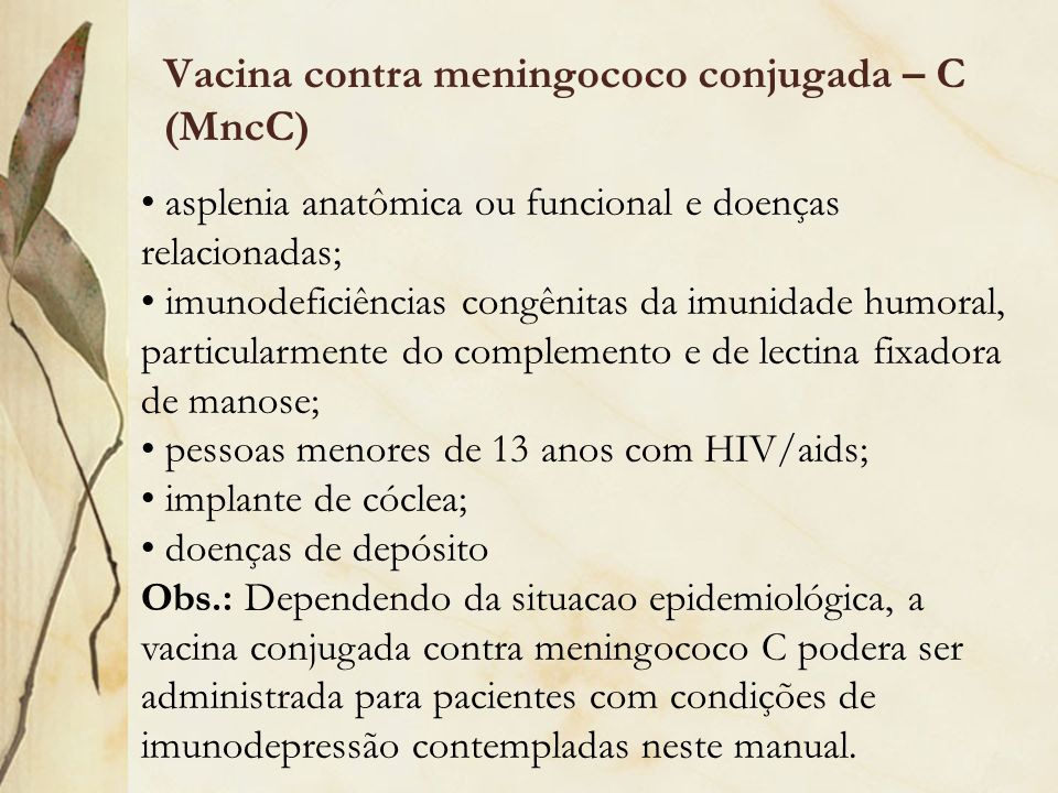 Vacina contra meningococo conjugada – C (MncC)
