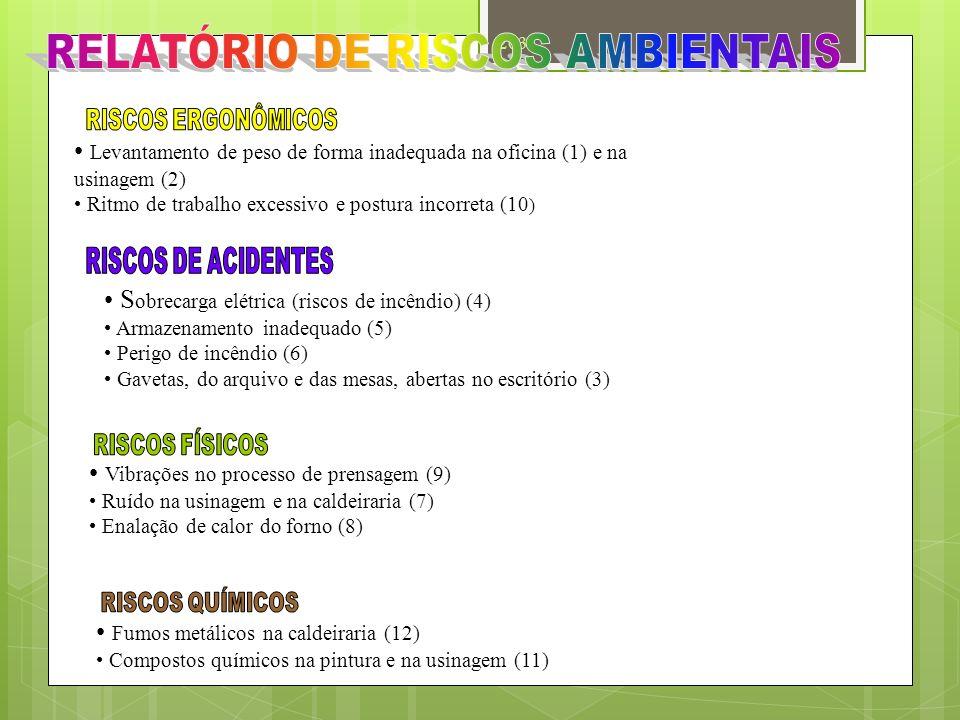 RELATÓRIO DE RISCOS AMBIENTAIS