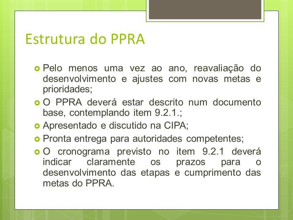 Estrutura do PPRA Pelo menos uma vez ao ano, reavaliação do desenvolvimento e ajustes com novas metas e prioridades;