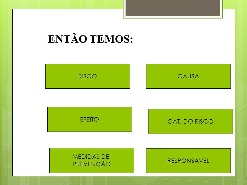 ENTÃO TEMOS: RISCO CAUSA EFEITO CAT. DO RISCO MEDIDAS DE PREVENÇÃO
